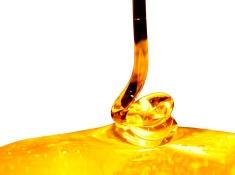 Proceso de Envasado de la Miel