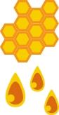 3- Extraction of Honey